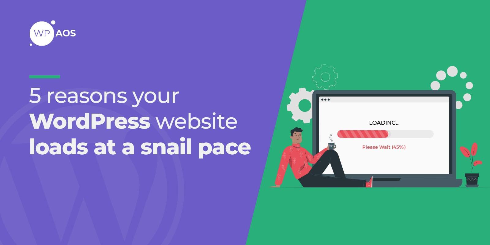 slow website, wordpress optimization, woocommerce maintenance, wpaos