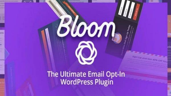 Bloom newsletter