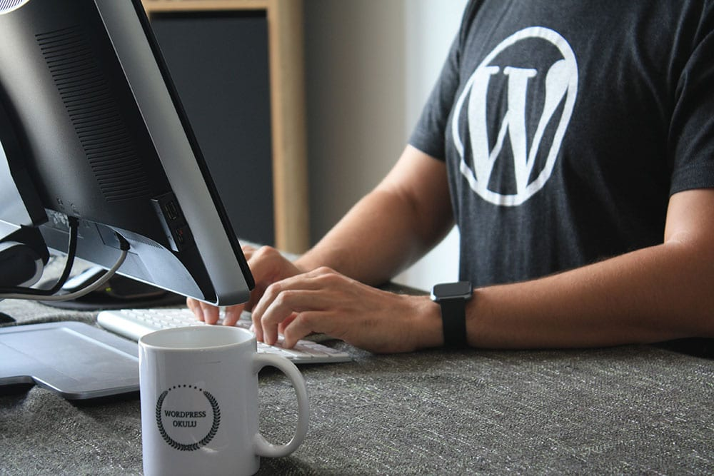 using-wordpress-min