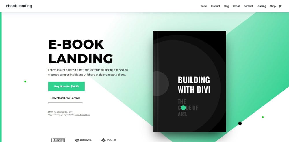 DIVI Theme, Best WooCommerce themes, online books shops, WordPress Maintenance, wpaos
