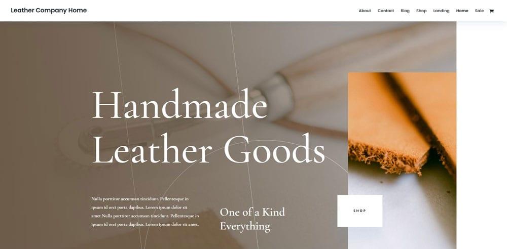 DIVI Theme, Best WooCommerce themes, Bags Accessories Shops, WordPress Maintenance, wpaos