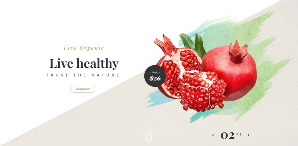Organie Theme, Best WooCommerce themes, online food shops, WordPress Maintenance, wpaos