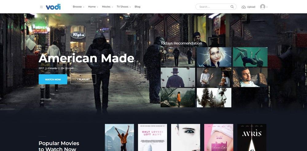 Vodi Theme, WordPress Maintenance, wpaos