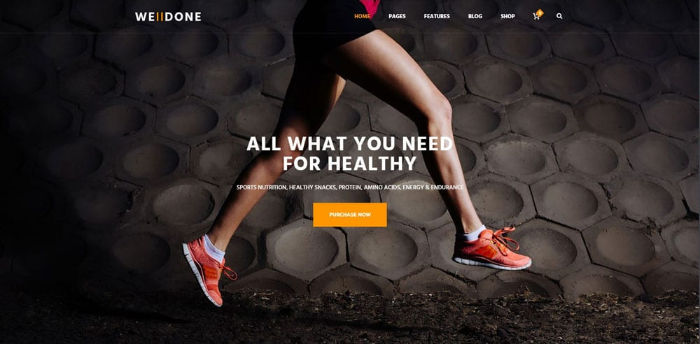 Welldone Theme, Best WooCommerce themes, online sports shops, WordPress Maintenance, wpaos