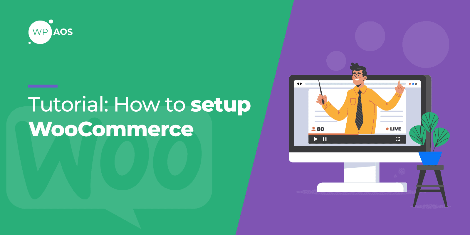 WooCommerce Setup Tutorial, WordPress Maintenance, wpaos