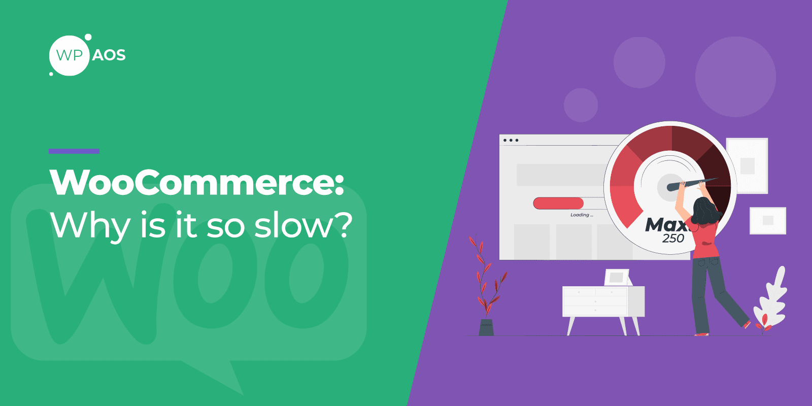 why woocommerce is slow, wordpress maintenance, wpaos