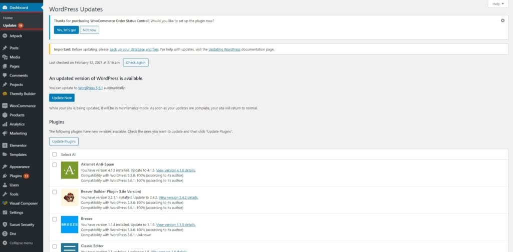 WordPress Security Updates